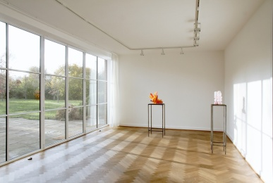 """Dekor und Deformation"", Mies van der Rohe Haus, Berlin, 2017"