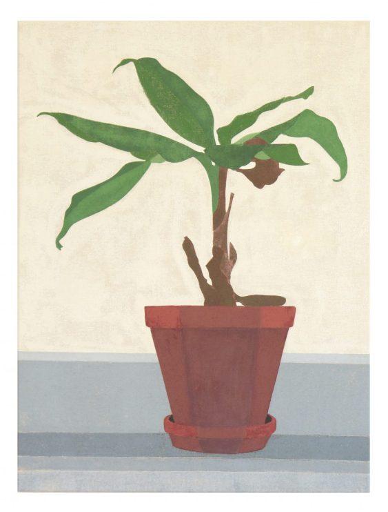Zimmerpflanze, 2016, 70 x 50 cm, tempera on canvas